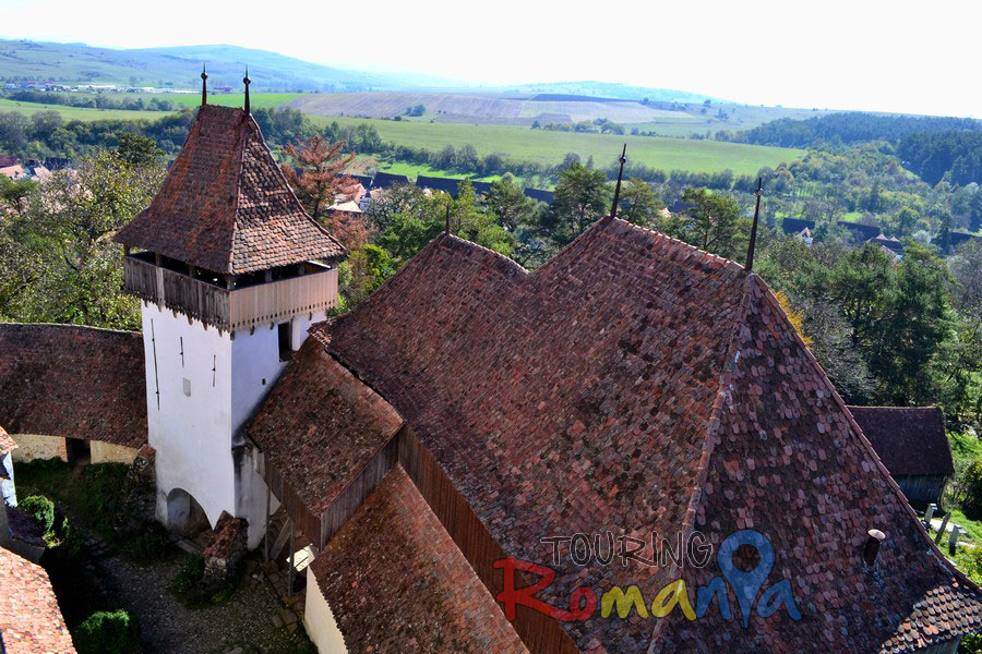 Fortified Church from Viscri Unesco Transylvania Romania00020