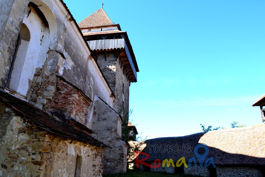 Fortified Church from Viscri Unesco Transylvania Romania00024