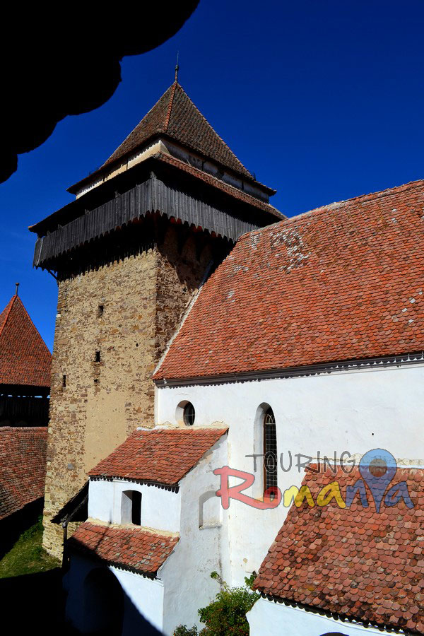 Fortified Church from Viscri Unesco Transylvania Romania00037