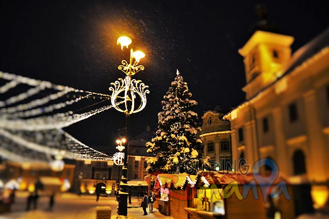 Enjoy 3 Christmas Markets from Transylvania: Sibiu, Sighisoara and Brasov - Private Guided Tour