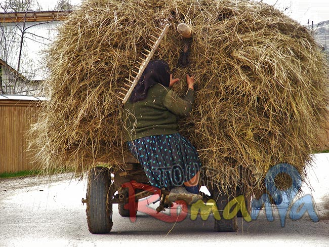 People from Maramures Romania 5