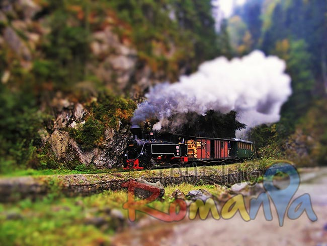Mocanita Steam Train Maramures Romania