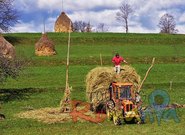 People from Maramures Romania 7