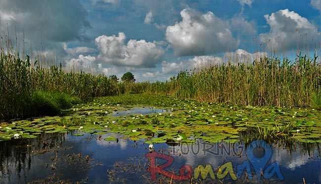 Danube Delta Small Shared Tour 2