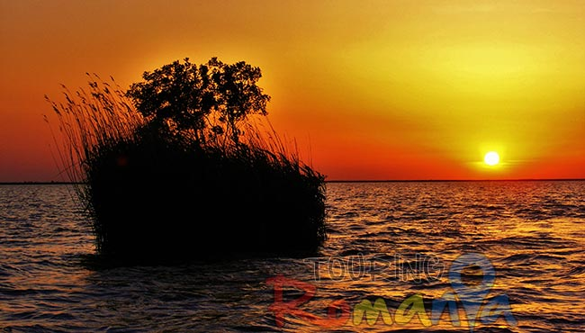 Danube Delta Small Shared Tour 13