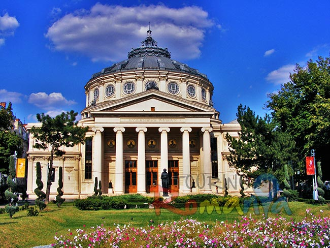Danube Delta Small Shared Tour Romanian Atheneum Bucharest